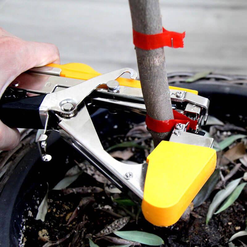 Степлер как инструмент для подвязки растений